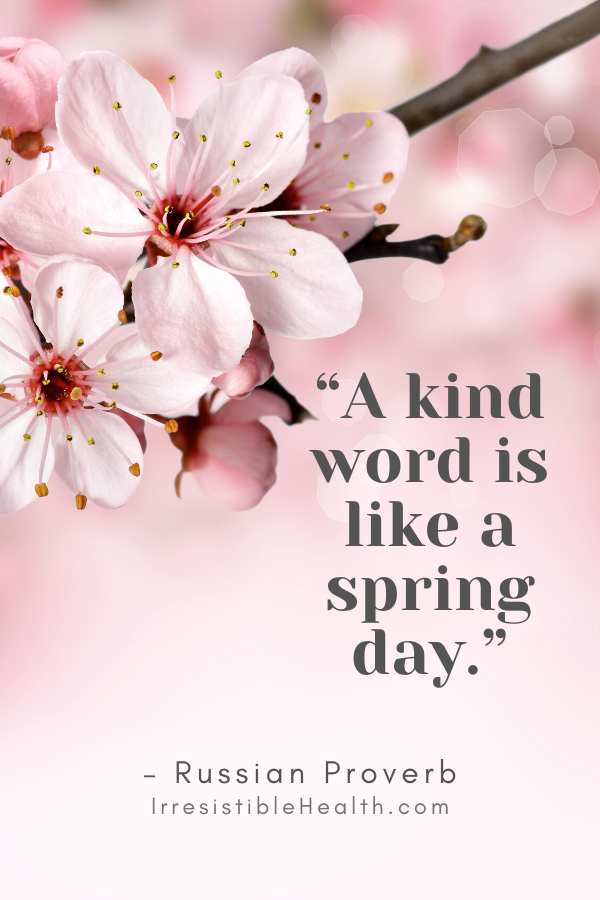 russian proverb spring